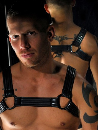 Mostly Gay- Road Warrior Harness