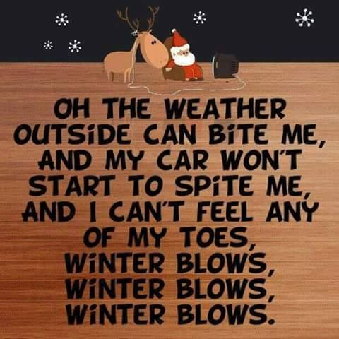 winter-blows