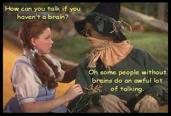 Wizard Of Oz Brain Parody