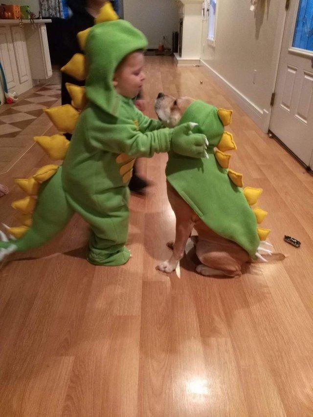 Child Dog Duo Costumes