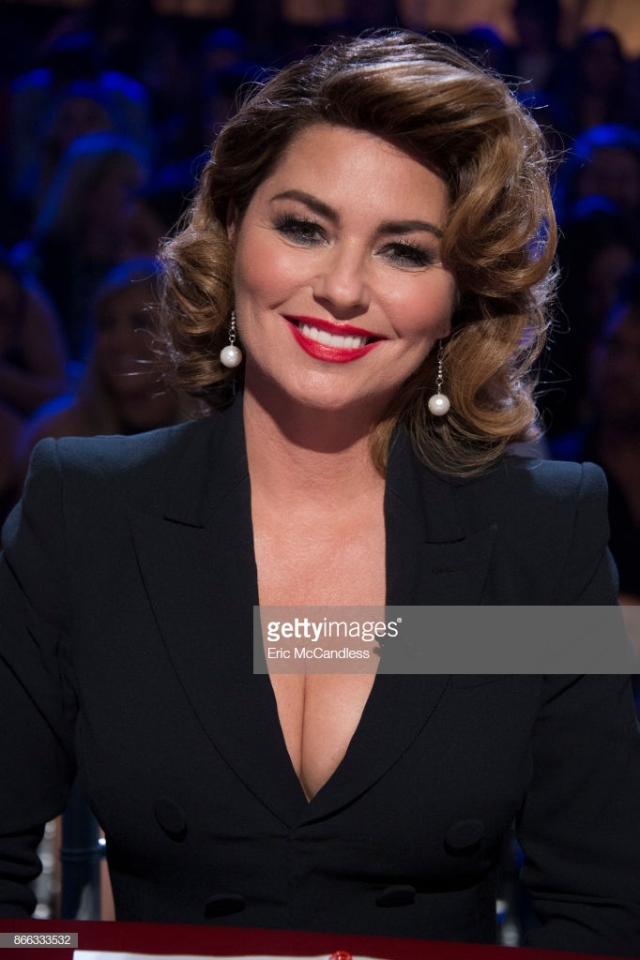 Shania Twain Butchered Face